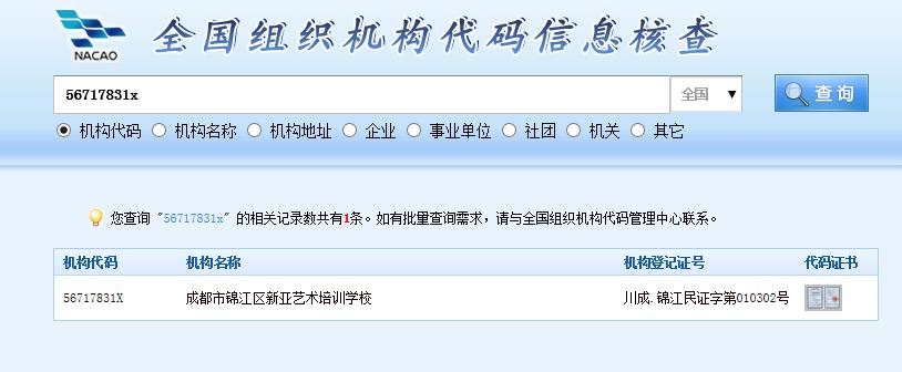 新亚艺术培训学校组织机构代码查询截图