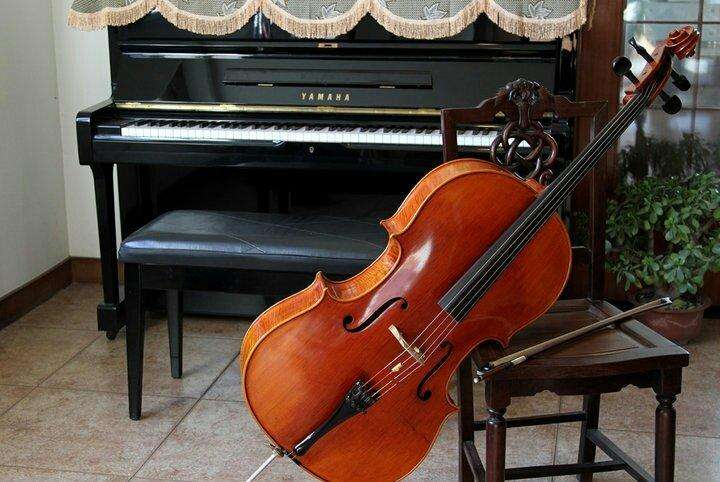成都大提琴培训学校